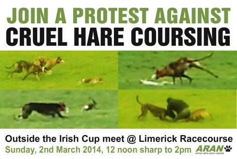 IRISH CUP DEMO 2014