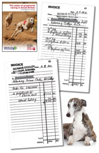 irish greyhounds ucd