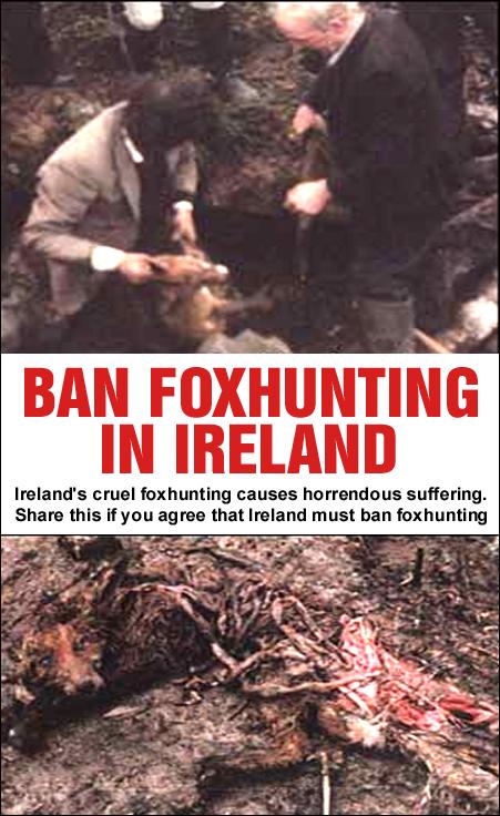 ban foxhunting in Ireland 2015