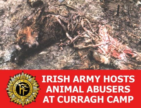 irish army hosts animal abusers