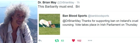 'Hare coursing barbarity must end' ~Brian May