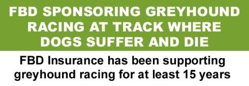 FBD sponsoring greyhound racing