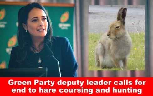 green party deputy leader calls for end to hare coursing and hunting.jpg