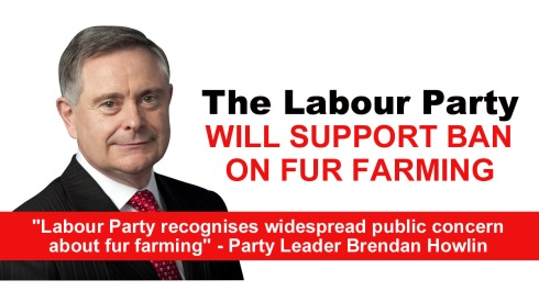 labour party will support ban on fur farming