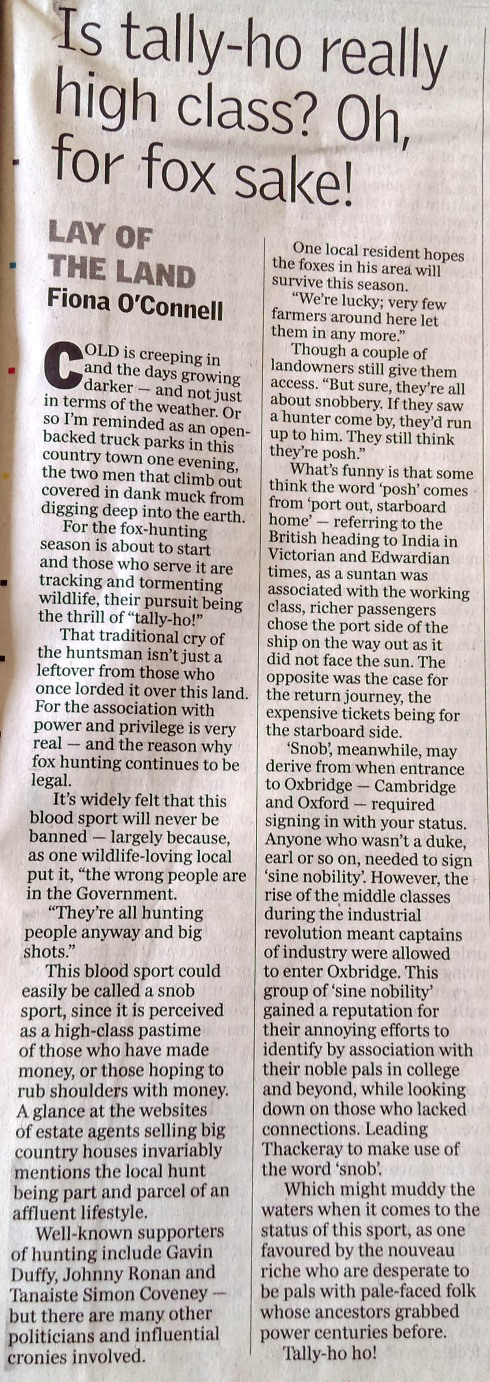 fiona O'Connell column foxhunting sept 16 2018.jpg