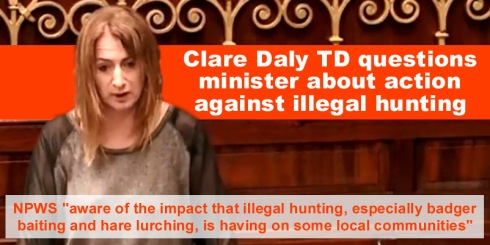 dail question clare daly illegal hunting copy