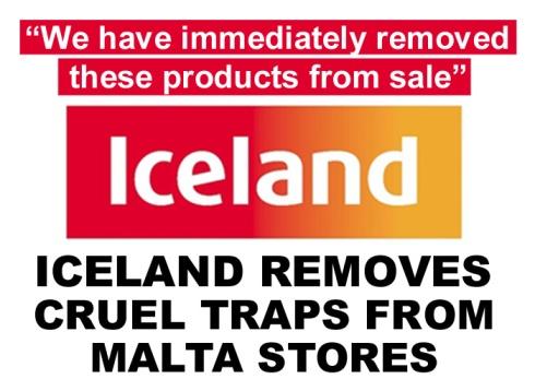 iceland removes cruel traps