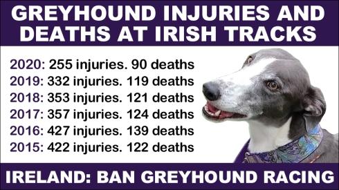 Greyhound Injuries and deaths at Irish tracks 2015 to 2020 copy
