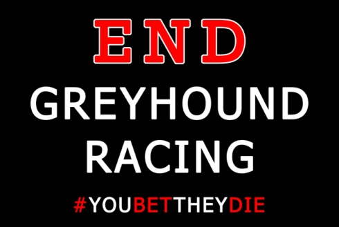 6. End greyhound racing small