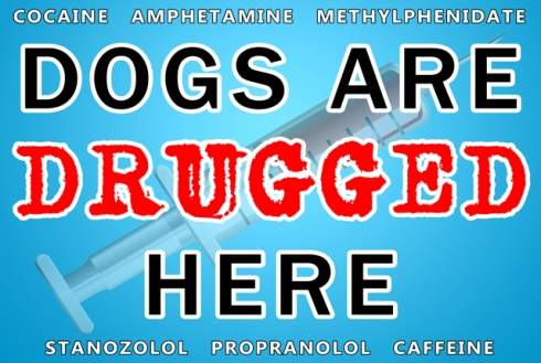 Dogs Are Drugged Here - blue small