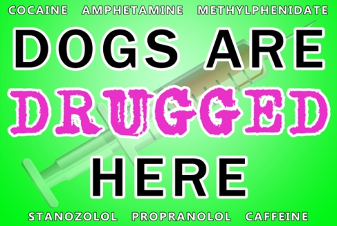 Dogs Are Drugged Here - Green small