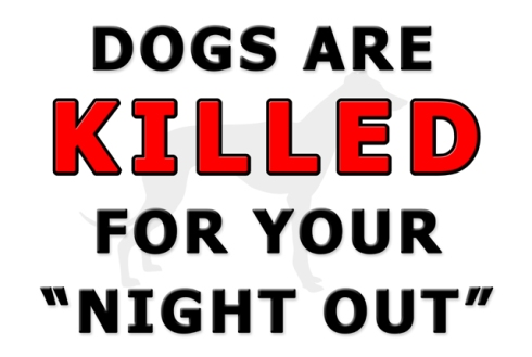 Dogs are killed for your night out small