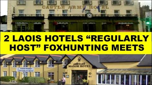 2 laois hotels