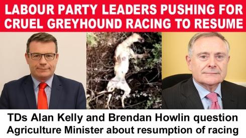 alan kelly and brendan howlin copy
