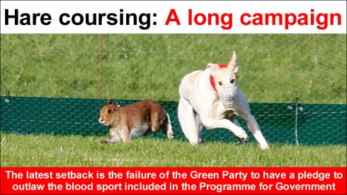 hare coursing a long campaign JF letter june 2020