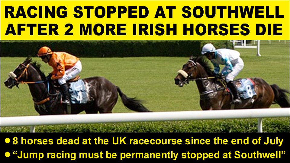 southwell racing stopped copy
