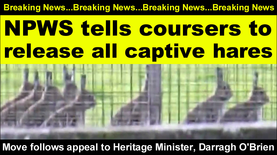 breaking news npws tells coursers copy