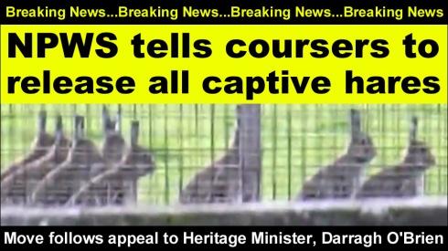 breaking news npws tells coursers copy