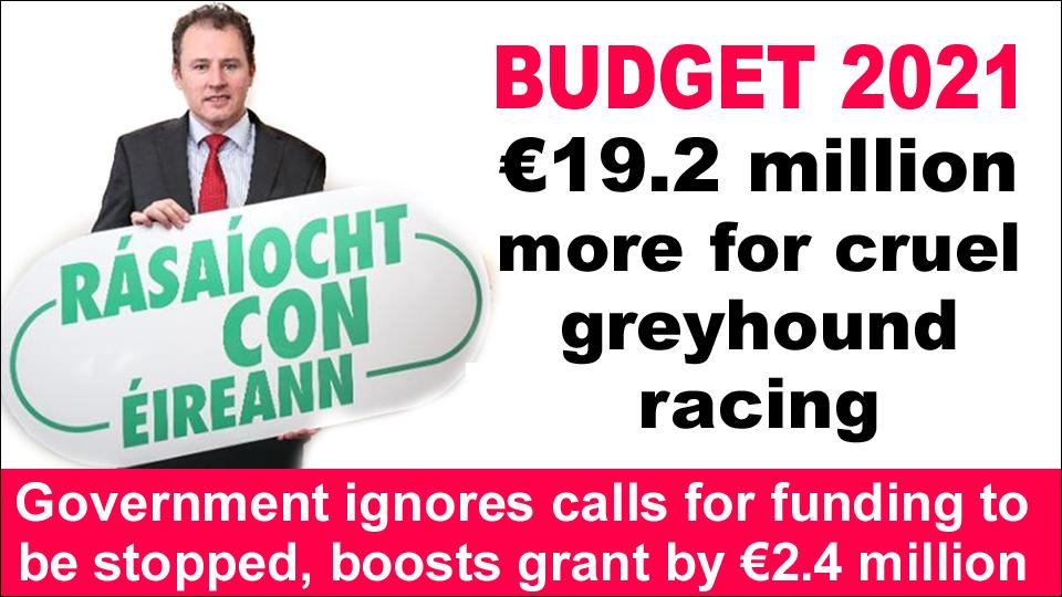 BUDGET 2021 – 19.2 m for greyhound racing copy