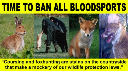 TIME TO BAN COURSING AND ALL BLOODSPORTS copy