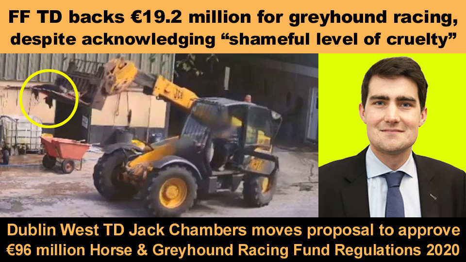 jack chambers horse and greyhound fund 2020 copy