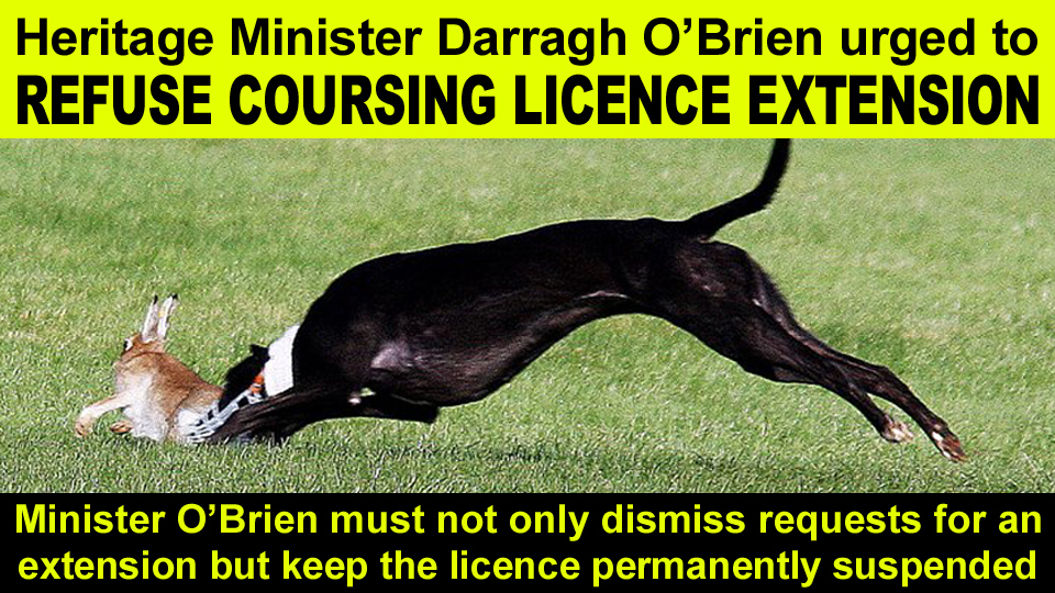 licence extensions copy
