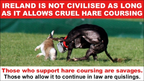 ireland is not civilised as long as it allows coursing copy