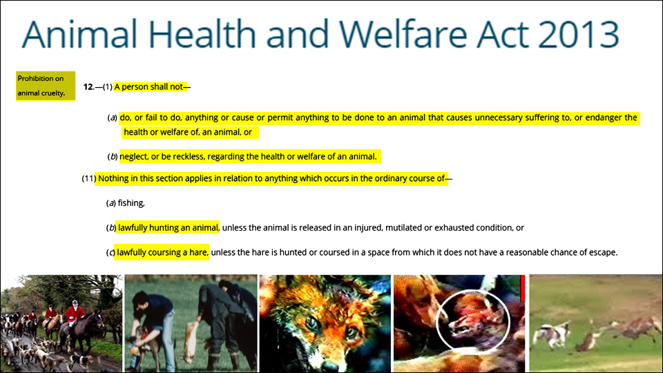 animal health and welfare act 2013 exemptions