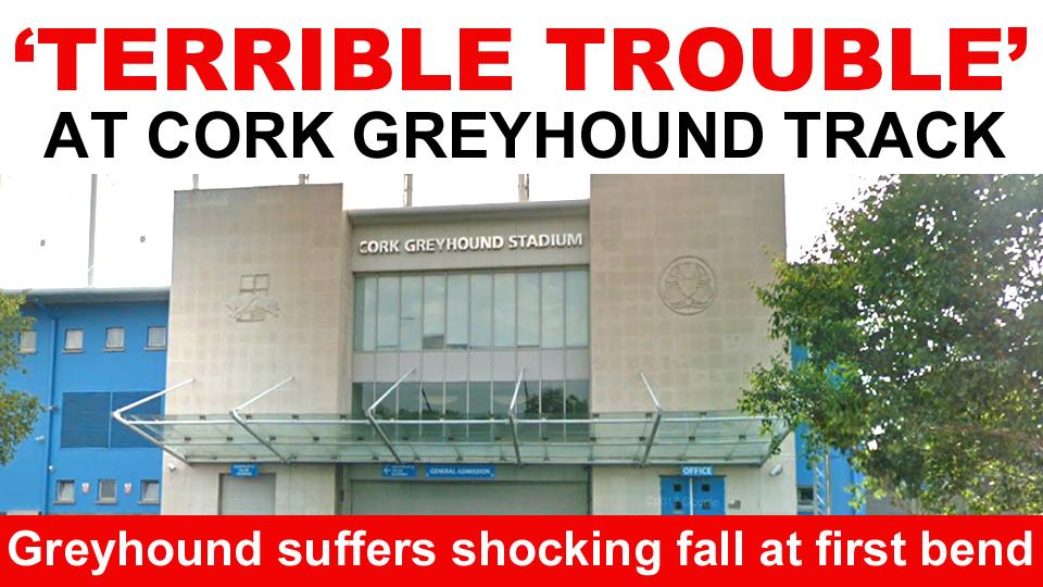 curraheen park terrible trouble copy