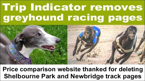 Trip Indicator remove greyhound racing copy