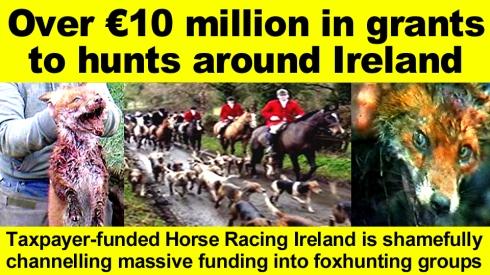 Over €10 million in grants to hunts around Ireland copy